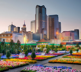 Downtown Dallas from the Flower Market