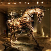 "<h2>The Steampunk Horse</h2> <br/>I was in London and found this place just after my wife and I had a lovely dinner with Matt Ridley (have you seen his TED Talk on ""When Ideas Have Sex""?)  Visit my <a href=""http://www.stuckincustoms.com/best-ted-talks/"">Best TED Talks</a> page to see it... right there at the top! He's a great guy and his TED speech did not mention why ideas would come together to make a steampunk horse.  We passed a gallery in a nice part of town that was totally dark and mysterious -- except for this wonderful creation inside.  I could not resist and had to whip out the tripod to make it happen!<br/><br/>- Trey Ratcliff<br/><br/><a href=""http://www.stuckincustoms.com/2010/12/08/steampunk-hors/"" rel=""nofollow"">Click here to read the rest of this post at the Stuck in Customs blog.</a>"