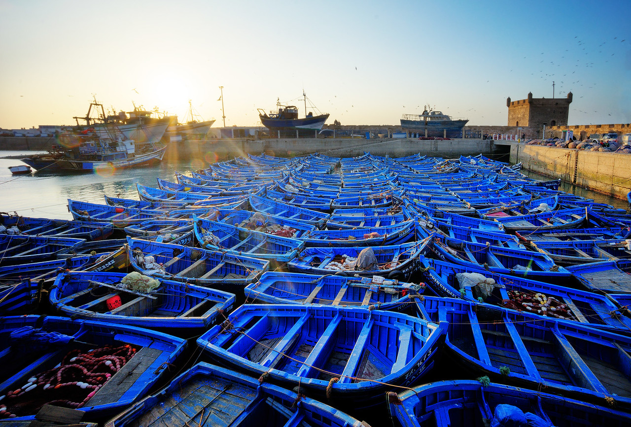 The Blue Boats Of Essaouira