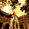 "<h2>Swallowing the Ruins - Trey Ratcliff</h2> <br/>I made it to the heart of Ta Prohm, an undisturbed Bayon ruin out the outskirts of Angkor Wat. It was late in the day and there was a break in the afternoon summer showers.<br/><br/>To me, the best thing about these temples and ruins is that you can go anywhere, high or low, safe or not. There are hundreds of tiny nooks, old broken stone doors, lost hallways, and mysterious carvings peeking out of the overgrowth. There are no tort-related legal signs barring you from going anywhere... explorer beware. Besides, if you got injured, the jungle and insects would eat you alive before the night was over.<br/><br/>As soon as I walked into Ta Prohm, the thunder started rumbling around and dappled clouds rolled in. The rain started and stopped several times, so I would take refuge in crumbling crypts and hallways until the rain let up. I took some wrong turns, but I eventually ended up here with a break in the storm. I popped out with the 10 mm get this shot.<br/><br/>- Trey Ratcliff<br/><br/><a href=""http://www.stuckincustoms.com/2007/06/03/swallowing-the-ruins/"" rel=""nofollow"">Click here to read the rest of this post at the Stuck in Customs blog.</a>"