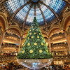 "<h2>Christmas Tree in Paris</h2> <br/>I visited this place about four times two weeks ago! If you saw the review yesterday, then you will note that I tried out a few lenses on this tree too. I think this one is my favorite of the shots…<br/><br/>This amazing Christmas display is in the Galaries Lafayette. Also, on the first floor, you should go have lunch at Angelina… they have amazing hot chocolate. The roof also has another cafe with amazing views of the city. <br/><br/>- Trey Ratcliff<br/><br/><a href=""http://www.stuckincustoms.com/2012/11/29/4-million-on-google-and-christmas-in-paris/"" rel=""nofollow"">Click here to read the rest of this post at the Stuck in Customs blog.</a>"
