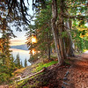 "<h2>Two Paths</h2> <br/>This path around Crater Lake winds this way and that. It occasionally opens up to a wide vista where I can see the lake and morning sun. But the path itself was quite nice with the sun slicing in through the early-yellow leaves.<br/><br/>You might remember this from the video I made while here a few weeks ago. As usual, you can find that video and more on my YouTube channel!<br/><br/>- Trey Ratcliff<br/><br/><a href=""http://www.stuckincustoms.com/2011/12/05/two-paths/"" rel=""nofollow"">Click here to read the rest of this post at the Stuck in Customs blog.</a>"