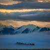 "<h2>The Trees Peak Through The Fog</h2> <br/><br/>I was waiting in Tekapo with my son for my wife to arrive. We had just finished spending the day shooting the Loon Balloons from Google X, and we were going to meet Tina and the girls in Tekapo. Since they were arriving after sunset, I wanted to find a good place to watch the sun go down. I could not decide between Lake Tekapo and Lake Pukaki, which are very close together. So, in between the two, I saw this fog rolling in and decided to stop and take this photo. <br/><br/>- Trey Ratcliff<br/><br/><a href=""http://www.stuckincustoms.com/2013/07/06/the-tree-peak-through/"" rel=""nofollow"">Click here to read the rest of this post at the Stuck in Customs blog.</a>"