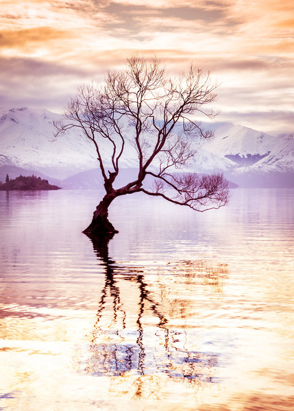 "<h2>Peaceful Evening in Wanaka</h2> <br/>I had a peaceful evening in Wanaka. <br/><br/>There is this tree that sits out in the middle of the lake. It's so unusual. I love the way it reflects back on itself in the smooth water. I was by myself, listening to music on my iPod, and just watching the water as it would calm down then get excited, then calm down again. I swapped out lenses a few times and kept moving around to admire it from different angles. This one was one of my favorites. <br/><br/>- Trey Ratcliff<br/><br/><a href=""http://www.stuckincustoms.com/2013/06/29/wanaka-tree/"" rel=""nofollow"">Click here to read the rest of this post at the Stuck in Customs blog.</a>"