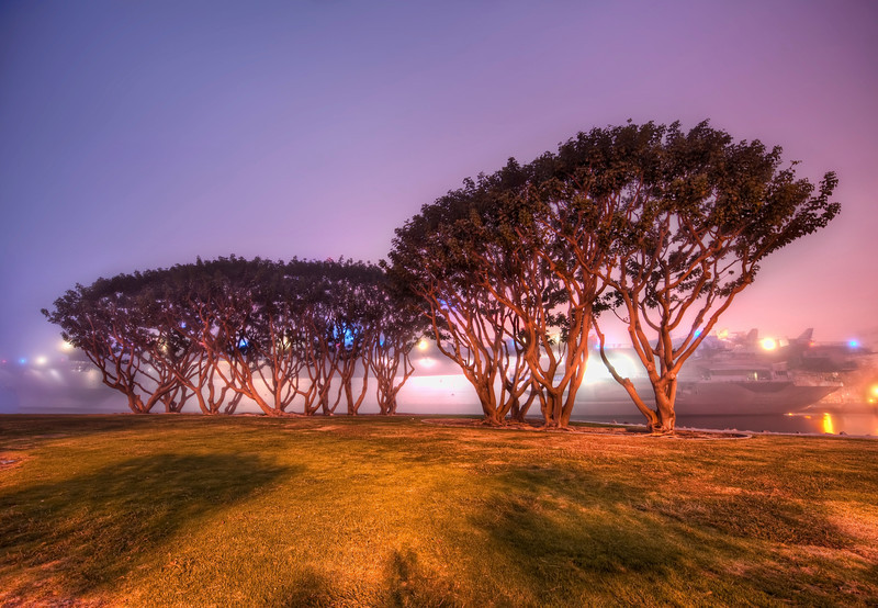 "<h2>Trees and an Aircraft Carrier in the Fog</h2> <br/>The time I spent in San Diego was very moody and covered in fog.  I went down to the shore one night to spy the USS Midway.  The fog was pea-soup thick and it gave the environs quite the mood.  I found these amazing trees nearby that seemed wonderfully illuminated against the glow from the aircraft carrier.<br/><br/>- Trey Ratcliff<br/><br/><a href=""http://www.stuckincustoms.com/2009/11/18/trees-and-an-aircraft-carrier-in-the-fog/"" rel=""nofollow"">Click here to read the rest of this post at the Stuck in Customs blog.</a>"