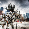 "<h2>The Metal Moose</h2> <br/>After the book party in Chicago (thanks again for all of you that showed up!), we had a little photowalk the next day.  Along the way, we stopped outside an office building near Michigan Avenue that had this enormous metal moose.  I'm not a big fan of taking photos of art, but this was an exception. <br/><br/> - Trey Ratcliff <br/><br/>The rest of this entry, as well as plugs for a few eBooks by friends of mine, is <a href=""http://www.stuckincustoms.com/2010/07/10/the-metal-bull-new-ebooks-from-friends/"">here.</a>"