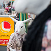 "<h2>The Hare in Harajuku</h2> Every time I go to Tokyo, I try to spend some time in Harajuku.  It's one of the wildest and most unique places in an already unique city.  It's the sort of place where you take a people-shooting lens because of all the various types of people you see walking through the streets.  And even more unique than the people are some of the shots and the decor, as you can see here...  - Trey Ratcliff  Read more <a href=""http://www.stuckincustoms.com/2011/07/20/the-hare-in-harajuku/"">here</a> at the Stuck in Customs blog."