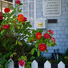"<h2>The TWIT Cottage</h2> <br/>For those of you that don't know, Leo has established an incredible lineup of podcasts, all of which eminate from this unassuming cottage in Petaluma, California. I've been over to the cottage twice, and I grabbed a few photos on my most recent trip.<br/><br/>- Trey Ratcliff<br/><br/><a href=""http://www.stuckincustoms.com/2010/08/22/leo-laporte-and-the-twit-cottage/"" rel=""nofollow"">Click here to read the rest of this post at the Stuck in Customs blog.</a>"