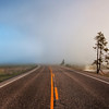 """<h2>The Wall of Fog</h2> <br/>The morning in Yellowstone had the most unusual weather! <br/><br/>While I was driving in, the Earth-heated river was steaming in the frigid morning air.  It looked incredibly awesome, but I knew it was the kind of thing that was really tough to capture in a photo.  After a bit more exploration and random turns, the road approached a giant wall of solid fog.  I popped out of the car for a shot before getting back in to drive into the wall.  Inside, the morning light was strange when it came in at sharp angles through the trees.  Since I had to drive so slow, I pulled over to the side and took out my pack for a morning hike into the trees...  I have more of those shots to post in the future!<br/><br/>- Trey Ratcliff<br/><br/><a href=""""http://www.stuckincustoms.com/2010/05/10/the-wall-of-fog/"""" rel=""""nofollow"""">Click here to read the rest of this post at the Stuck in Customs blog.</a>"""