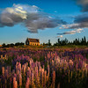 "<h2>The Lupins at Lake Tekapo</h2> <br/>I stopped at Lake Tekapo on the way to Christchurch for the great event there. Jason Law had told me all about the lupins here, so I was keen to see for myself! It was good to meet Jason and his crew there for a bit of shooting at sunset!<br/><br/>I enjoyed this spot so much that I came back on my drive home from Christchurch. And, if I were to speculate, I think I'll visit this place about 1,000 more times!<br/><br/>- Trey Ratcliff<br/><br/><a href=""http://www.stuckincustoms.com/2012/12/10/the-lupins-at-lake-tekapo/"" rel=""nofollow"">Click here to read the rest of this post at the Stuck in Customs blog.</a>"