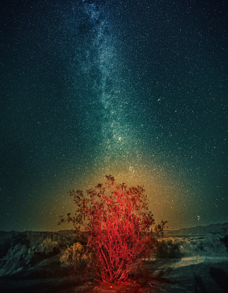 """<h2>The Milky Way over the Burning Bush</h2> <br/>I took this photo in Death Valley one evening. The bush is red and mysterious because of a bit or light-painting with my headlamp. My neck got a bit tired from multiple tries. That glow around it? I don't really know… maybe a bit of the dust from the desert caught the red light. Either way, I like how everything looks all funky and zen.<br/><br/>- Trey Ratcliff<br/><br/><a href=""""http://www.stuckincustoms.com/2013/03/20/genie-time-lapse-photography-camera-device/"""" rel=""""nofollow"""">Click here to read the rest of this post at the Stuck in Customs blog.</a>"""