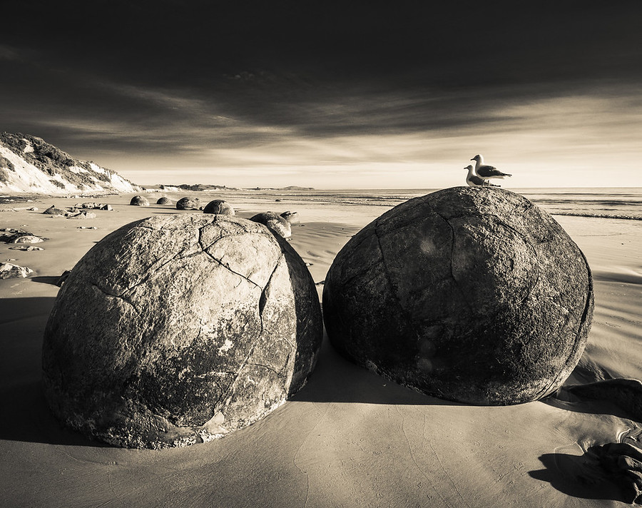 Birds on the Spherical Boulders