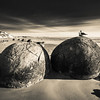 """<h2>Birds on the Spherical Boulders</h2> <br/>After the sun had gotten higher up in the air, I left """"sunrise shooting mode"""" and entered """"find interesting shapes mode."""" I had on my 14-24 lens, which means I had to get super-close to these birds. Birds are hard to take photos of, I think. So I had to be very slow, like a cat, on my approach to these boulders. I barely got off a shot before the freaked out and flew away!<br/><br/>- Trey Ratcliff<br/><br/><a href=""""http://www.stuckincustoms.com/2013/06/05/birds-on-the-spherical-boulders/"""" rel=""""nofollow"""">Click here to read the rest of this post at the Stuck in Customs blog.</a>"""
