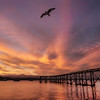 """<h2>The Bird of Moeraki</h2> <br/>We set up on the rocks of Moeraki just outside of Fleurs. There is this abandoned dock here that shoots out into the bay towards the sunset. I like this spot because it is one of the few places on the east coast I have found that points back west towards the sunset.<br/><br/>Taking photos of birds is really really really hard. It just takes a lot of trial and timing! I don't do a lot of close-ups of birds… just not my thing… but I do like to try to incorporate them into the landscape when it feels right!<br/><br/>- Trey Ratcliff<br/><br/><a href=""""http://www.stuckincustoms.com/2013/02/23/%D8%A7%D9%84%D8%B9%D8%A7%D9%84%D9%85%D9%8A%D8%A9-hdr%D8%A7%D9%87%D9%84%D8%A7-%D9%88-%D8%B3%D9%87%D9%84%D8%A7%D9%8B-%D8%A8%D9%83%D9%85-%D9%81%D9%8A-%D8%AF%D9%88%D8%B1%D8%A9-%D8%A7%D9%84/"""" rel=""""nofollow"""">Click here to read the rest of this post at the Stuck in Customs blog.</a>"""