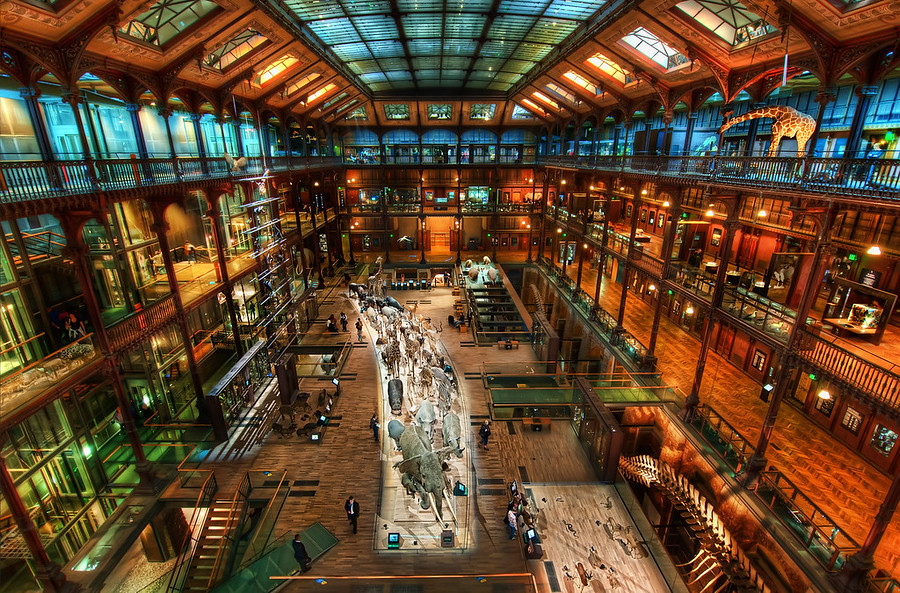The Secret Workshop Of Jules Verne