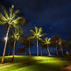 "<h2>Palm Trees at Night</h2> One night in Oahu we were doing some photography along a beach.  Off in the distance we saw some palm trees that were lit from the bottom.  It was about a quarter mile from anything else, so that was sort of strange.  But I thought it was so interesting to see them lit from the bottom with small green pools of light underneath that I decided to walk over there and see what was going on.  After I got over there, there were endless compositions of these various trees.  I grabbed about five different angles and then took a midnight-nature break of my own...<br/><br/>-Trey Ratcliff<br/><br/><a href=""http://www.stuckincustoms.com/2012/04/19/palm-trees-at-night/"" rel=""nofollow"">Check out the full post at the Stuck in Customs blog.</a>"