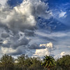 """<h2>A Giraffe on the Savannah</h2> <br/>Our giant reticulated friend, unable to articulate, was forced to gesticulate in the most ridiculous manner.<br/><br/>- Trey Ratcliff<br/><br/><a href=""""http://www.stuckincustoms.com/2008/09/04/another-animal/"""" rel=""""nofollow"""">Click here to read the rest of this post at the Stuck in Customs blog.</a>"""