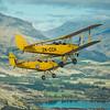 Wings Over Wanaka