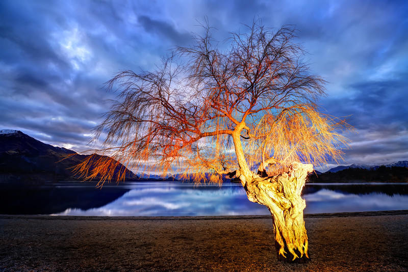 """<h2>Lonely Tree Aflame</h2> <br/>After having a great flat white with Tim and Bel, Abe (my intern for the winter/summer) and I went down to the lake. I picked out some trees I wanted to re-visit in the evening light. As I was driving around, I got an idea… it was dark and blue and I thought about what it would look like if the tree was instantly on fire… so I gave Abe some specific instructions and a secret signal.<br/><br/>I set up for the shot with the 14-24mm, prepared the timer, then made the secret signal to Abe. We gave it a few different tries until I felt like we had it right before driving back home over the crown range in the dark.<br/><br/>- Trey Ratcliff<br/><br/><a href=""""http://www.stuckincustoms.com/2012/06/18/lonely-tree-aflame/"""" rel=""""nofollow"""">Click here to read the rest at the Stuck in Customs blog.</a>"""