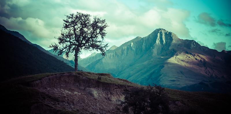 Hiking Across New Zealand