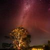 Stars Over The Party Tree In Hobbiton