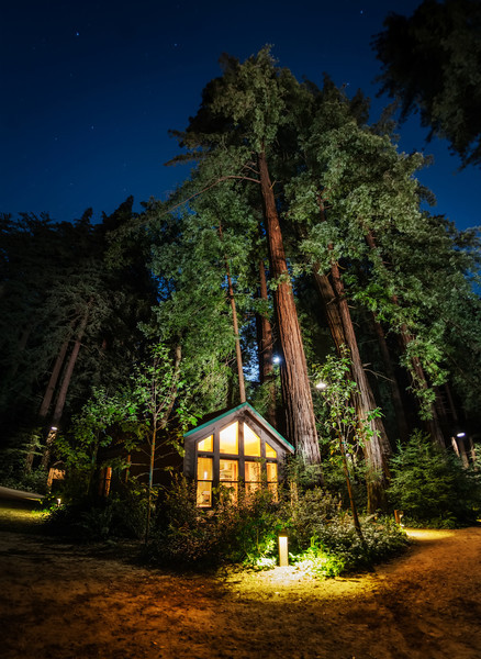 """<h2>The Mighty Trees at Glen Oaks Big Sur</h2> <br/>Here's another photo from that amazing place I stayed in Big Sur. It's called the Glen Oaks, so be sure to take a look at this place when planning a trip to the area!<br/><br/>It's fun to take photos of these huge trees. The difficult thing is getting a sense of scale. So it's good to use things in the photo like humans or houses to give everything a sense of perspective. This trick also works with caves or anything that is impressively huge in real life.<br/><br/>- Trey Ratcliff<br/><br/><a href=""""http://www.stuckincustoms.com/2013/06/17/the-mighty-trees-at-glen-oaks-big-sur/"""" rel=""""nofollow"""">Click here to read the rest of this post at the Stuck in Customs blog.</a>"""