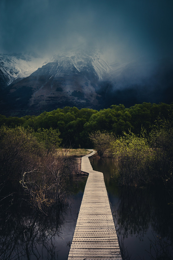 The Walking Path in Glenorchy hiking